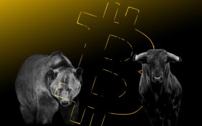 Wie zal de bovenhand krijgen; de bulls of de bears?